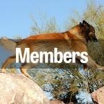 Group logo of Member