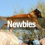 Group logo of Newbies